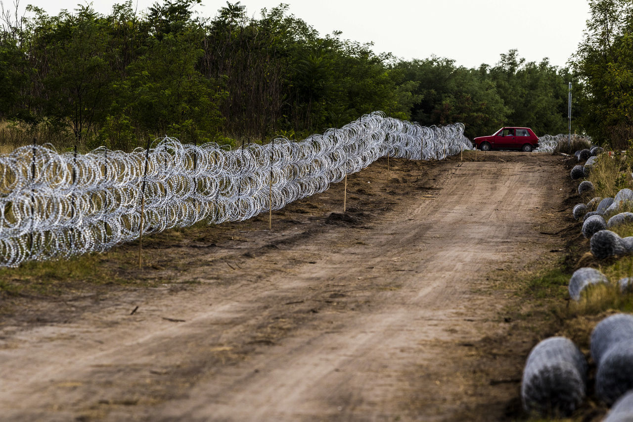 Firewall against illegal immigrants and refugees on the border between Hungary and Serbia Barbed Wire Barbed Wire Fence Border Borderline Car Day Fence Firewall Frontier Frontière Road State Border