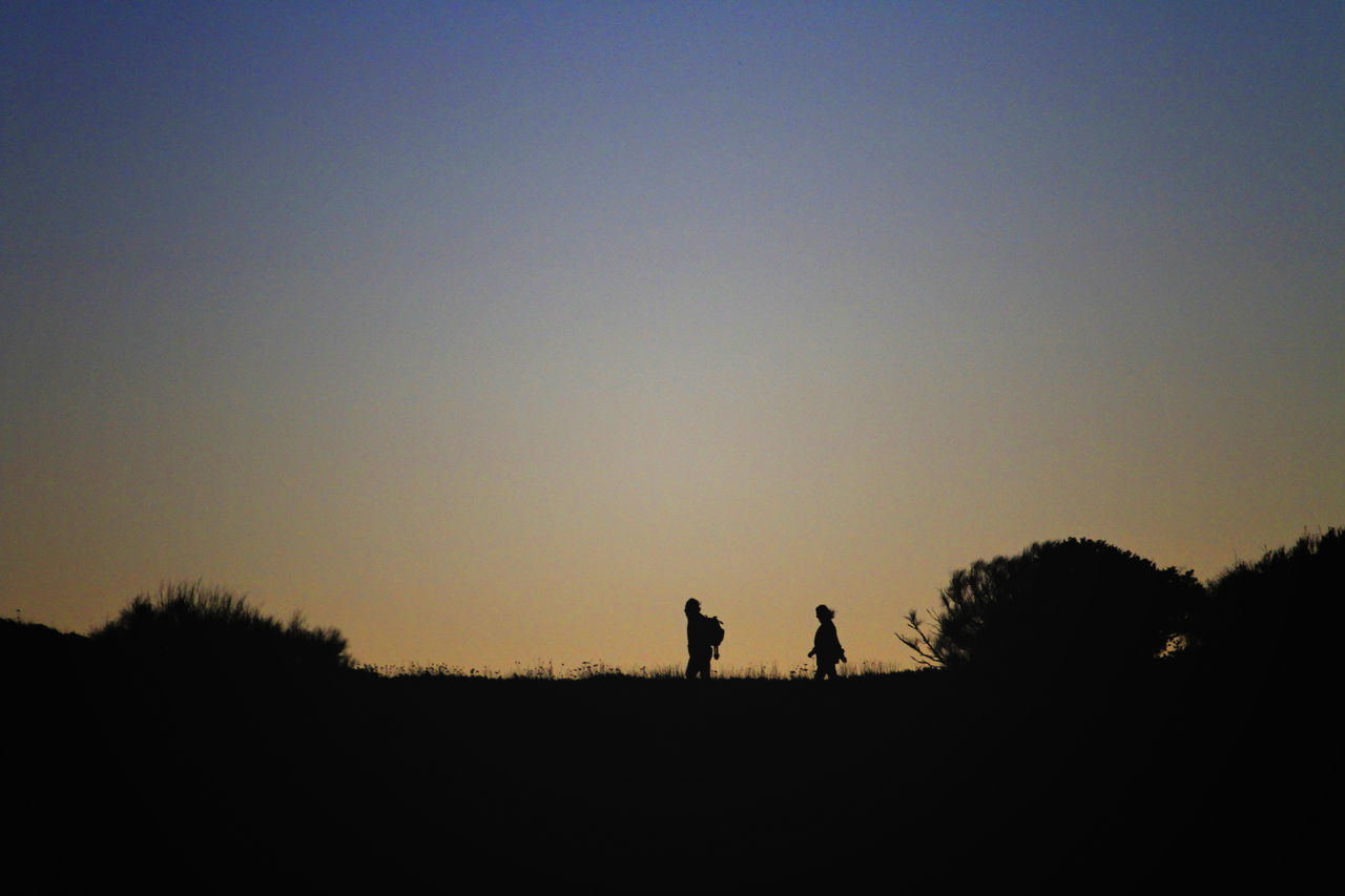 silhouette, real people, clear sky, walking, two people, sunset, nature, leisure activity, togetherness, sky, men, outdoors, tranquility, landscape, tree, standing, scenics, lifestyles, hiking, beauty in nature, bonding, women, full length, day, mammal, adult, people