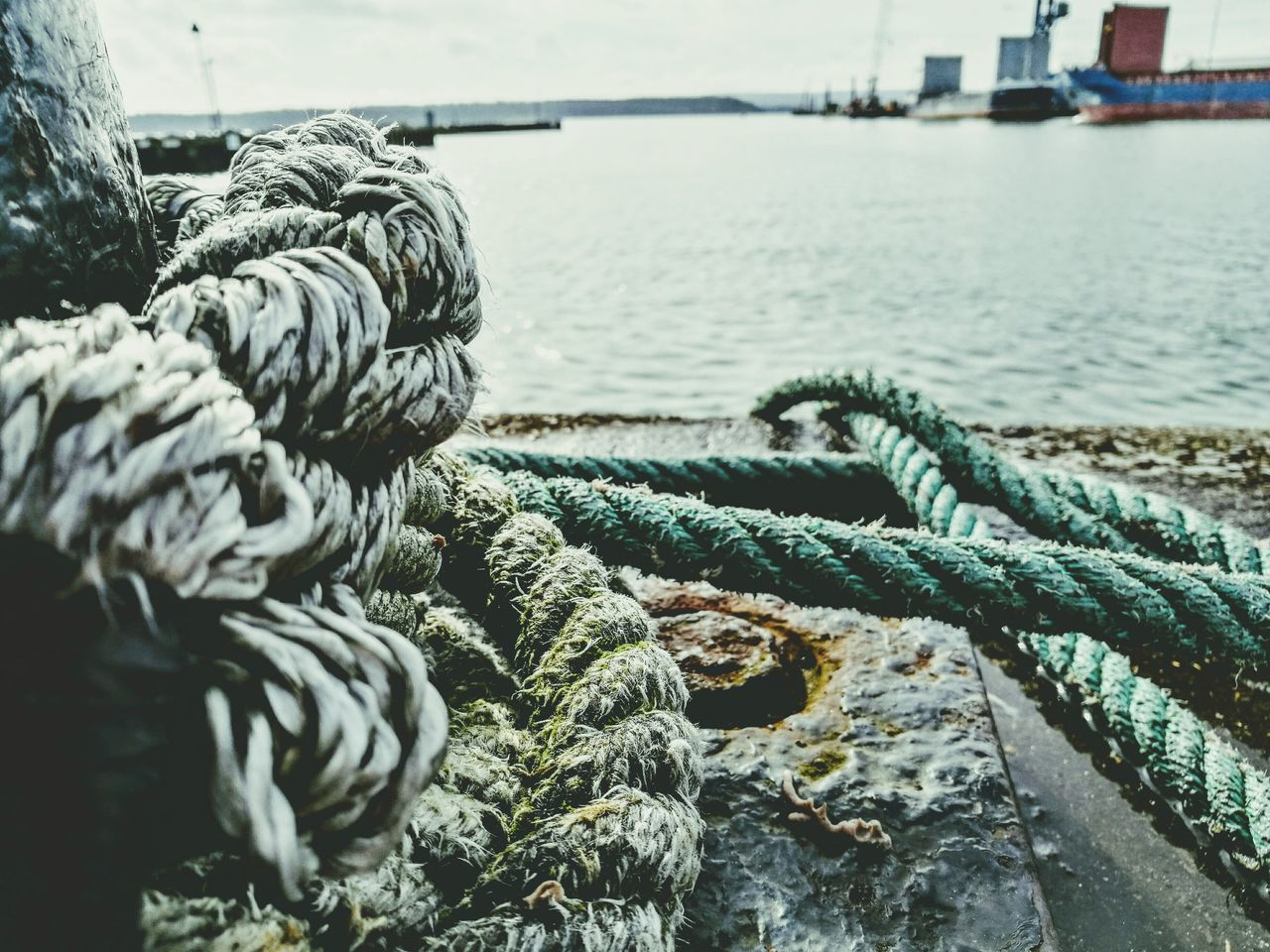 Nautical Vessel Beauty In Nature Yachting Water_collection Quayside Rope Nautical Knot Nautical Equipment Nautical Theme Love ♥ HuaweiP9