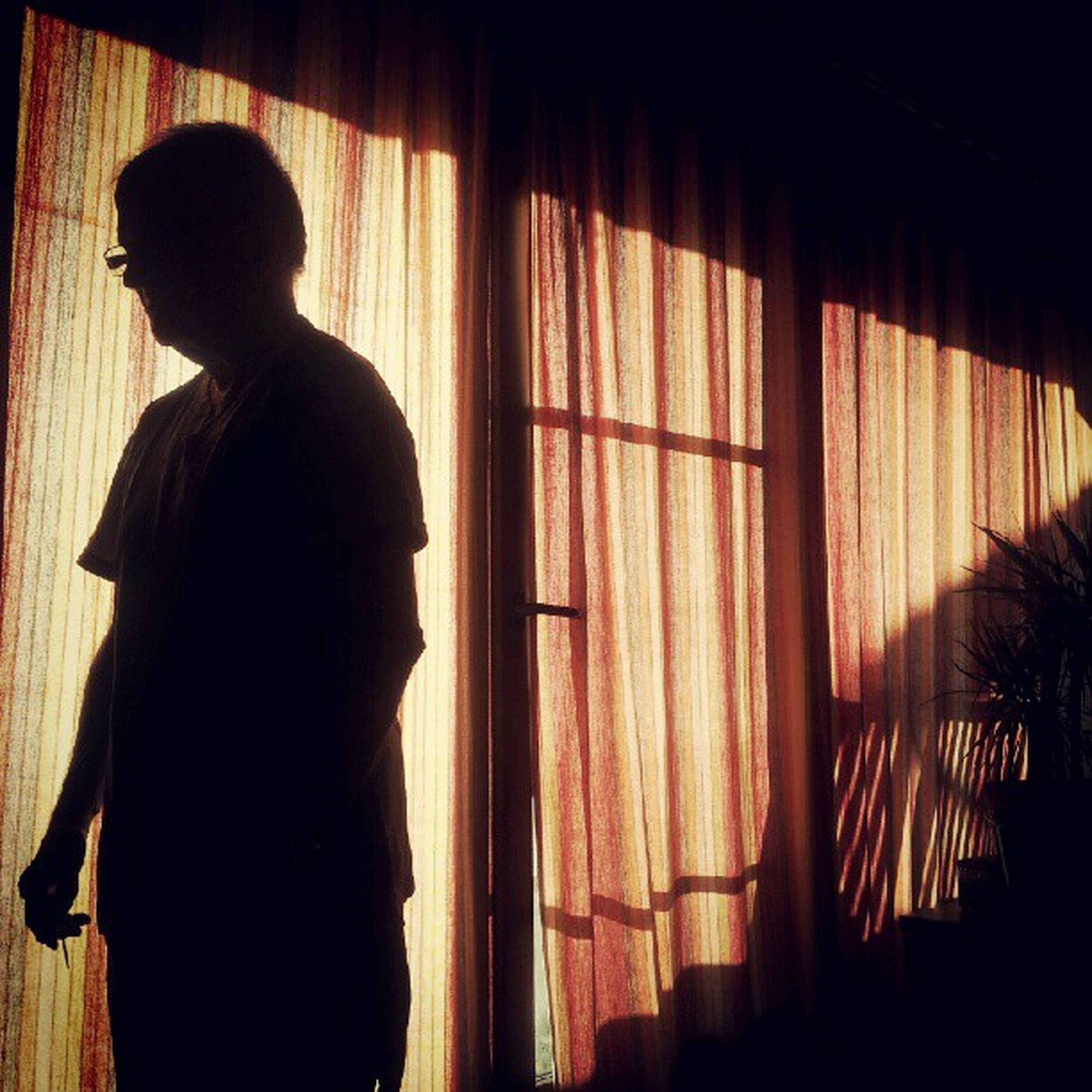 indoors, lifestyles, window, silhouette, home interior, leisure activity, side view, person, standing, curtain, sitting, domestic room, contemplation, rear view, sunlight, dark, relaxation, shadow