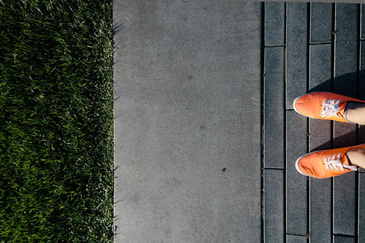 Beautiful stock photos of orange, Adult, Close-Up, Grass, Ground