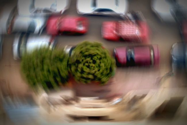 TreePorn Blurry Long Exposure Mobilephotography Streetphotography Verticalporn