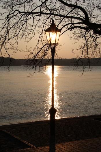 Abend Abendstimmung Berlin-Tegel Sonne Sonnenlicht Sonnenuntergang Tegel Tegeler See