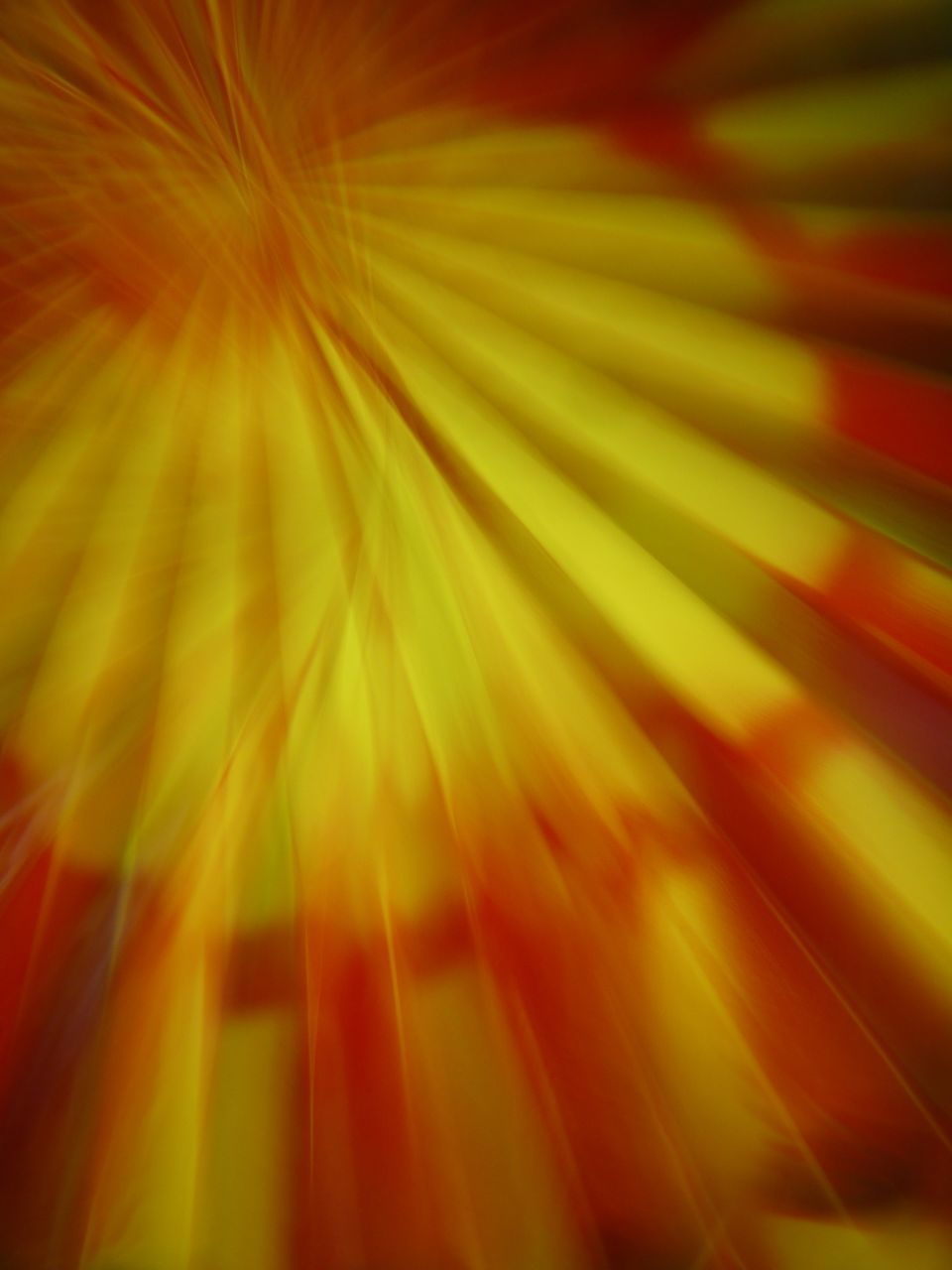backgrounds, full frame, abstract, multi colored, pattern, red, no people, close-up, illuminated, defocused, indoors, nature, day, freshness