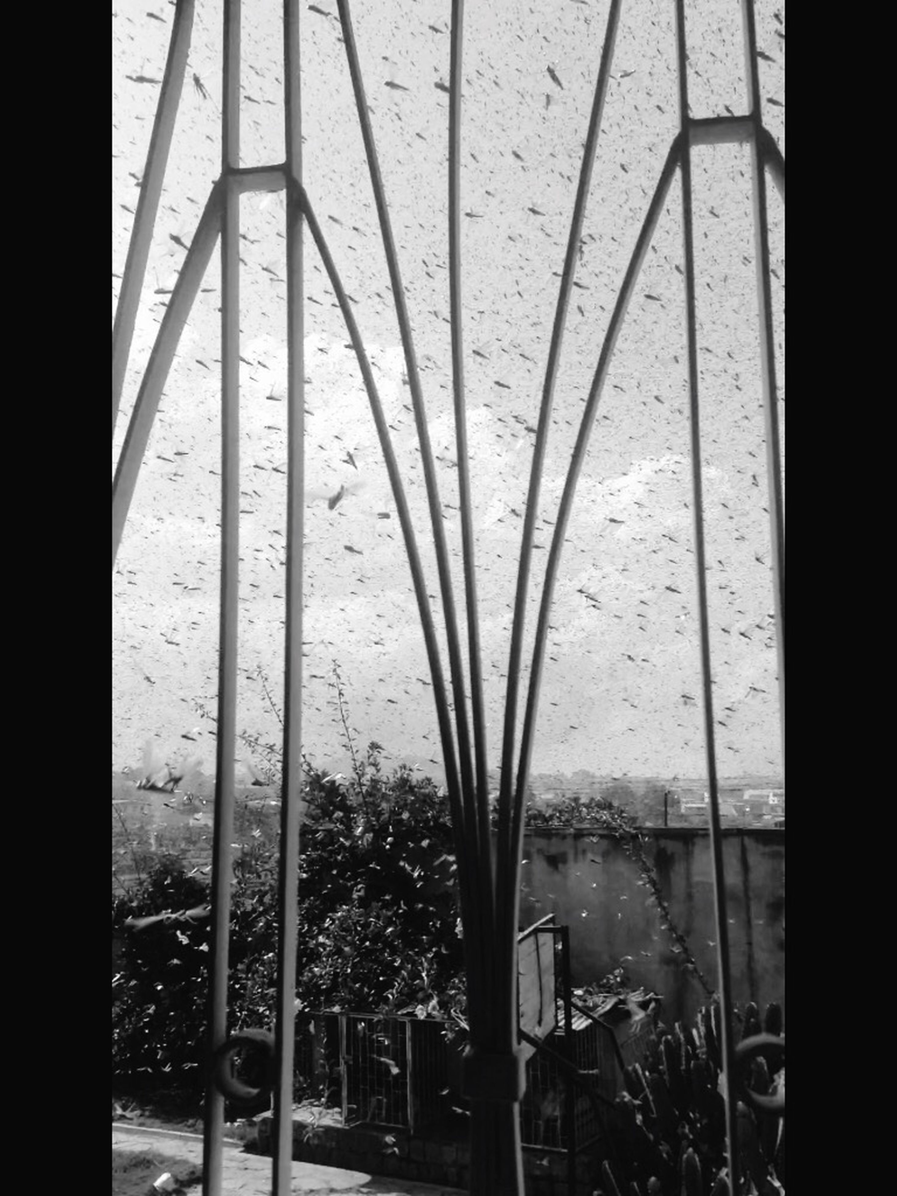 indoors, water, window, transparent, glass - material, wet, metal, reflection, close-up, day, drop, railing, glass, sunlight, no people, rain, pattern, high angle view, nature, built structure