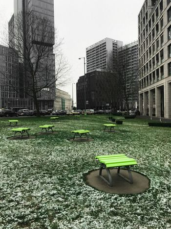 Berlin Architecture Frozen Grass Beautiful Bench Arrangement Art Urban Little Park Outdoors Exploring City Life Blackandwhite Touch Of The Color Green Tranquility Lonely Day Work Neighborhood