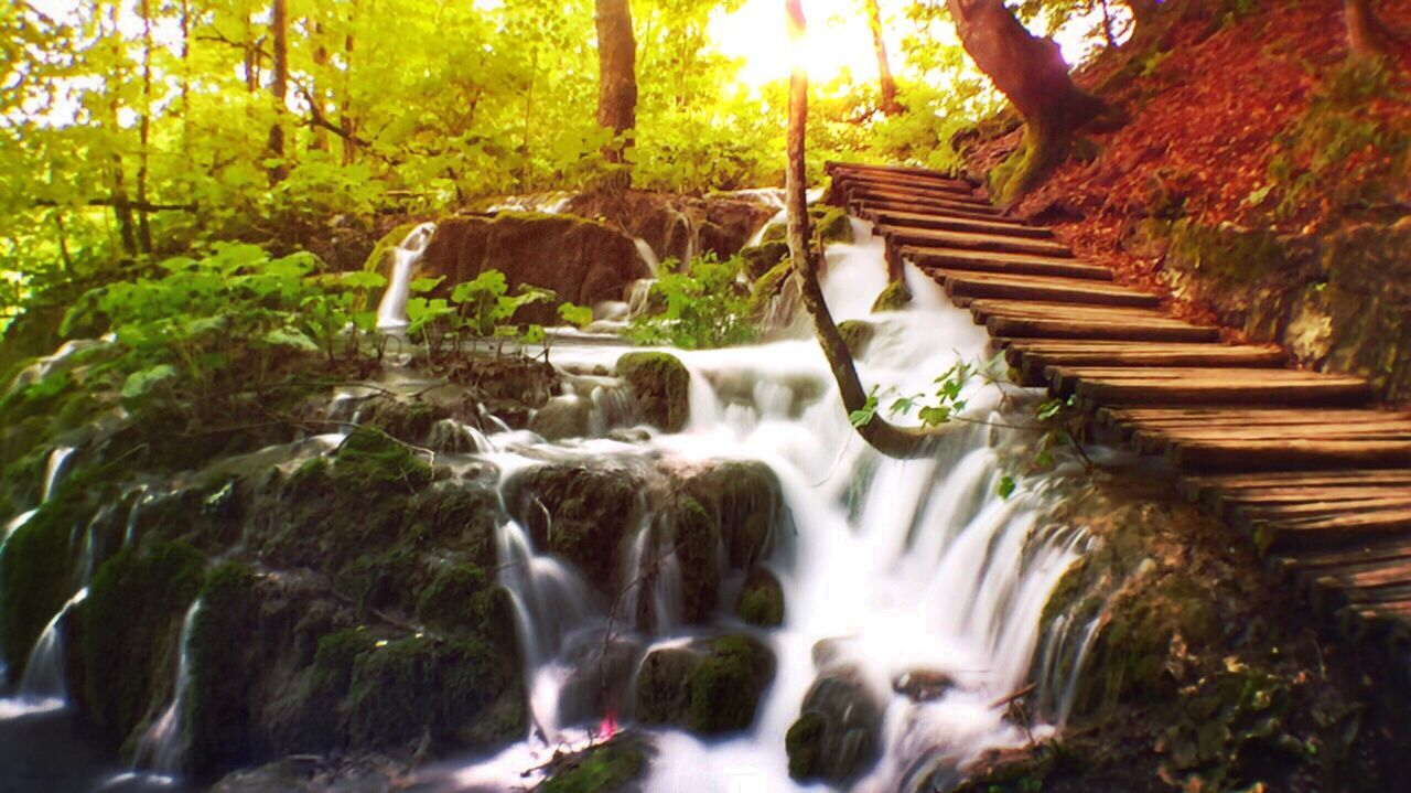 Waterfall Motion Waterfall Water Forest Flowing Water Flowing Scenics Long Exposure Beauty In Nature Nature Stream Power In Nature