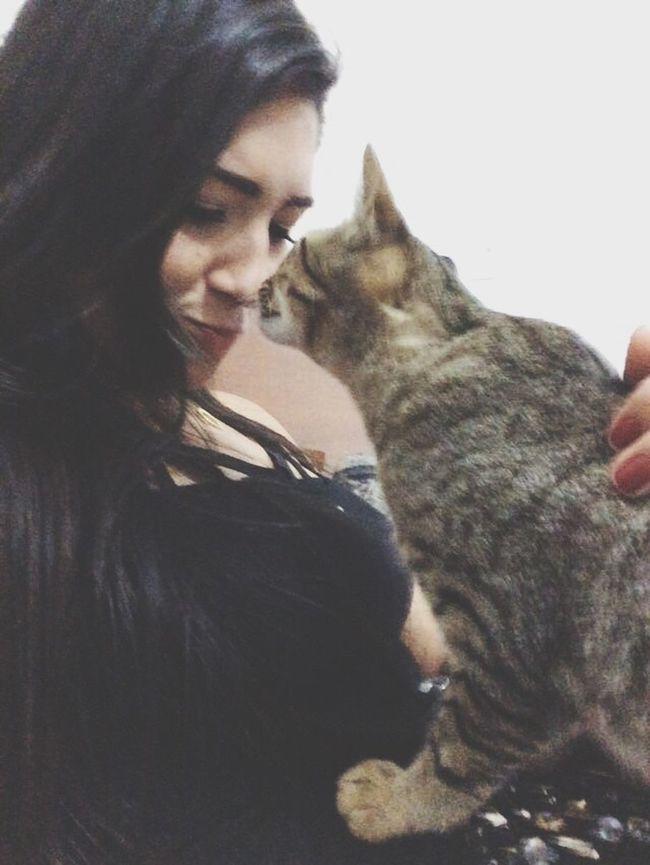 I love U ❤️ Beto Pet #sweet Cats MyLittleCat 💕 🐱 First Eyeem Photo