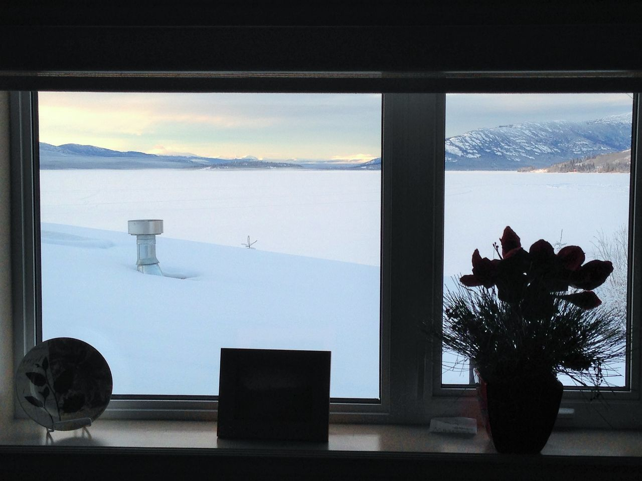 Potted Plant On Window Sill Against Snowcapped Landscape