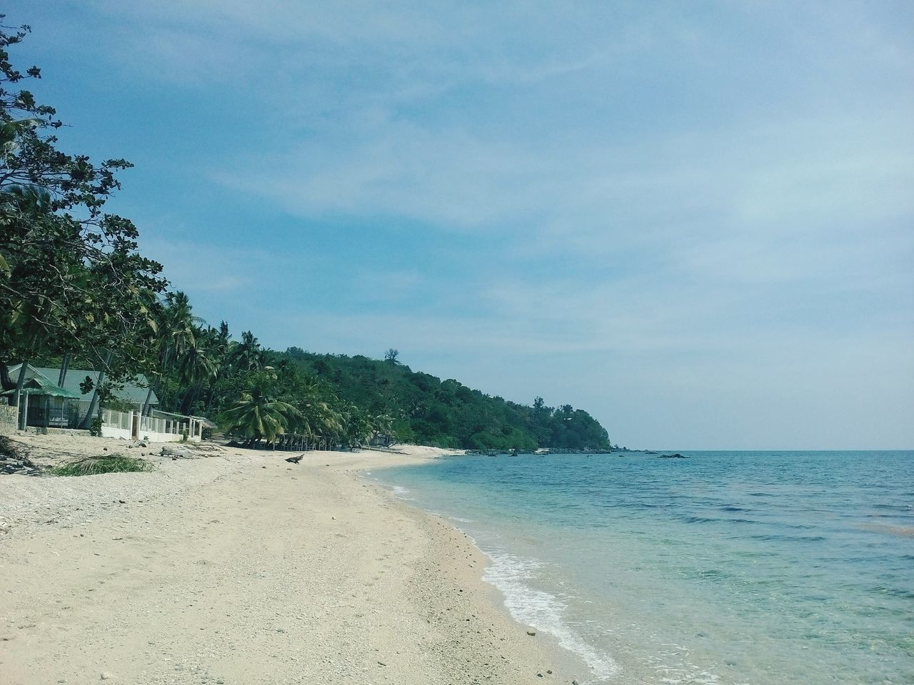 sea, beach, sand, sky, nature, beauty in nature, tranquility, no people, water, scenics, tranquil scene, outdoors, tree, day, horizon over water, scenery