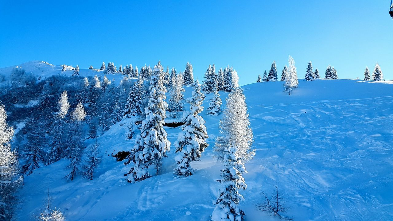 Samsung Galaxy Alpha, F/2.2, 1/800 sek, ISO 40, 4.09mm Photooftheday Photographer Nature Cold Snow Winter Skiing Trees Snow Trees Austria Mountain