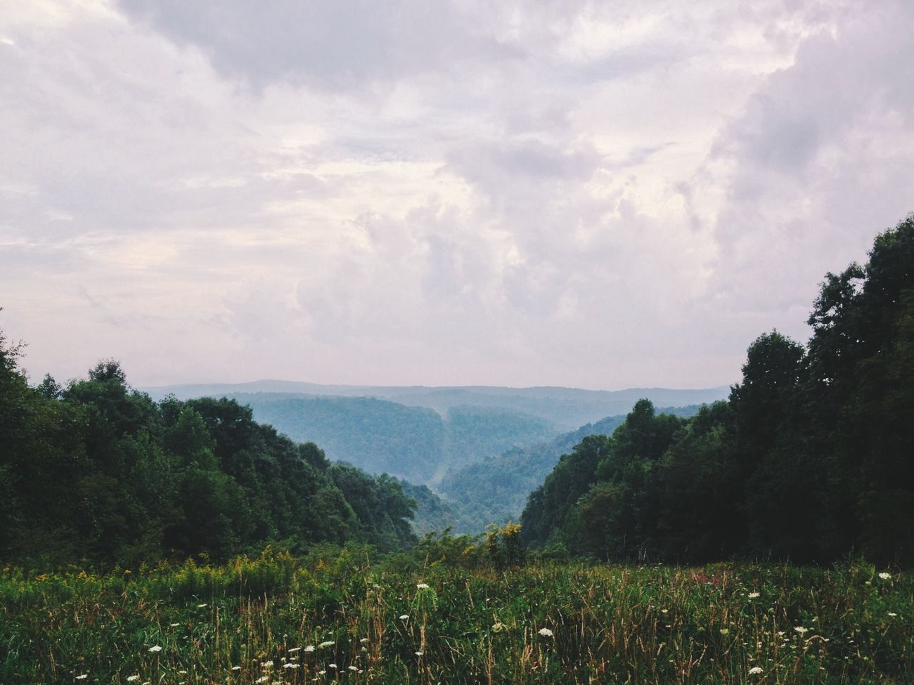 The Appalachian Plateau Vscocam Landlust Landscapes Countryside