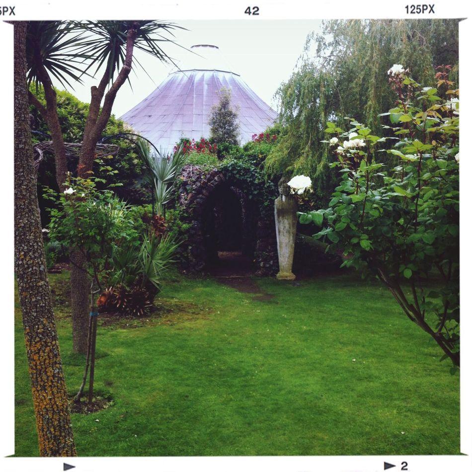 Garden Getting Inspired Nature