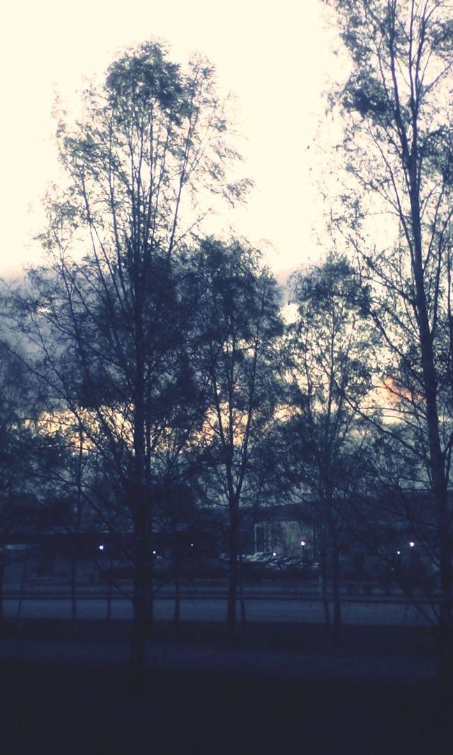 spring evening
