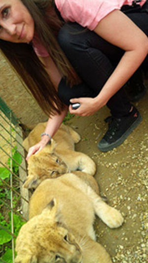 #animal #gyongyos #hungary #lion #me #zoo