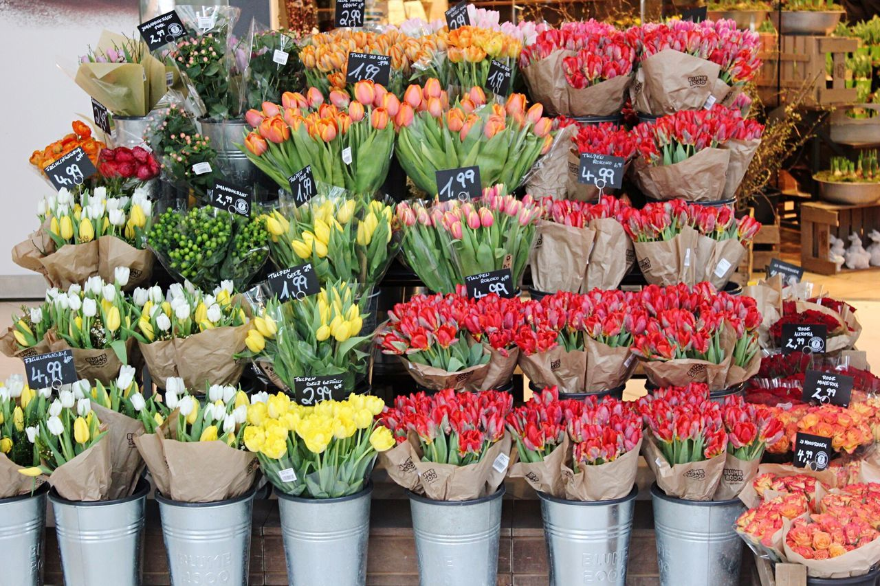Flower Freshness Market Flowers Tulips Spring For Sale Small Business Arrangement No People Nature Colors