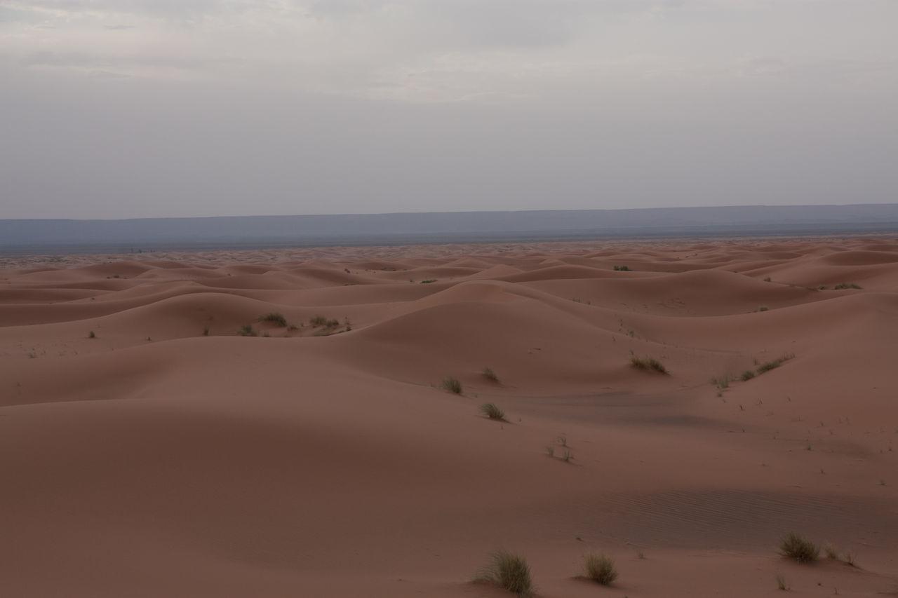 Beautiful stock photos of desert, Arid Climate, Arid Landscape, Day, Desert