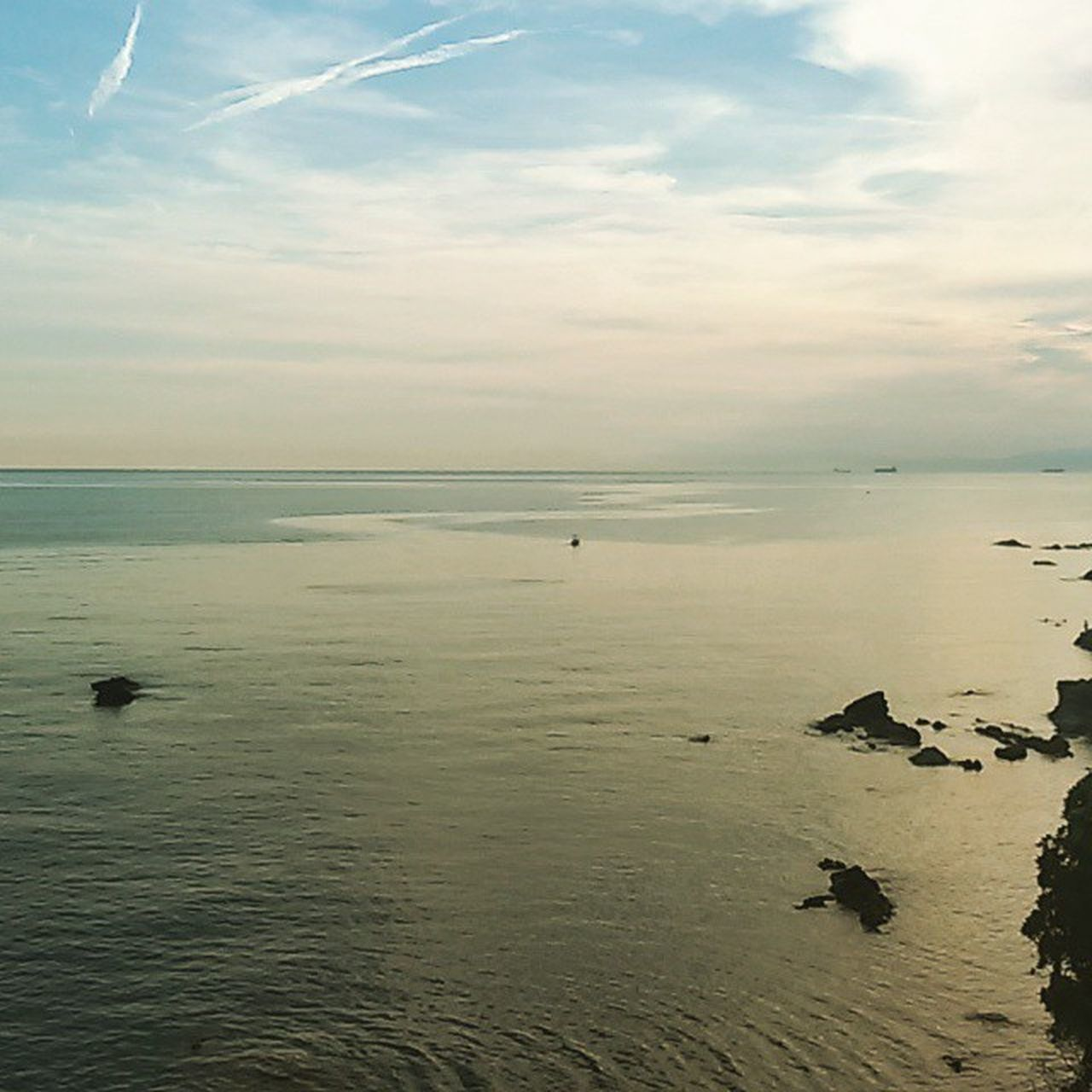 Mare Sea Juno