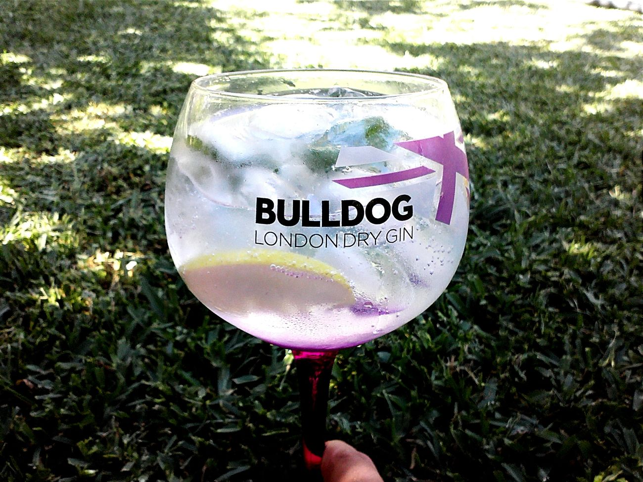Bulldog I Love Gin So Good