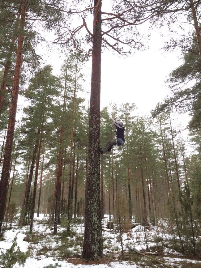 High altitude of Geocaching in Hagfors Sweden