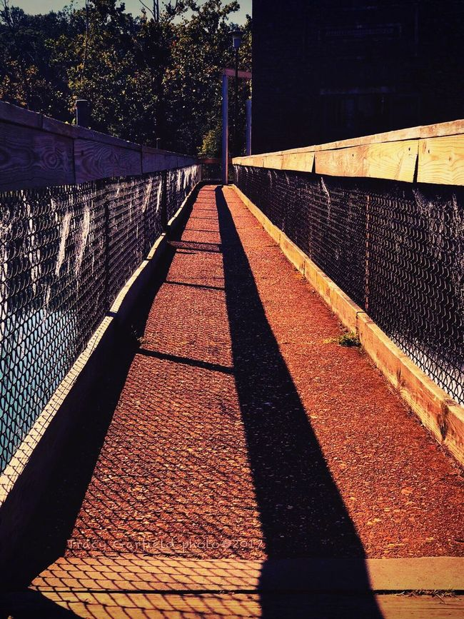 Sunlight Shadow Day Outdoors No People Power In Nature Tranquility Full Length Walkway Rusty Railings Spider Web The Week On EyeEm The Week On EyeEm