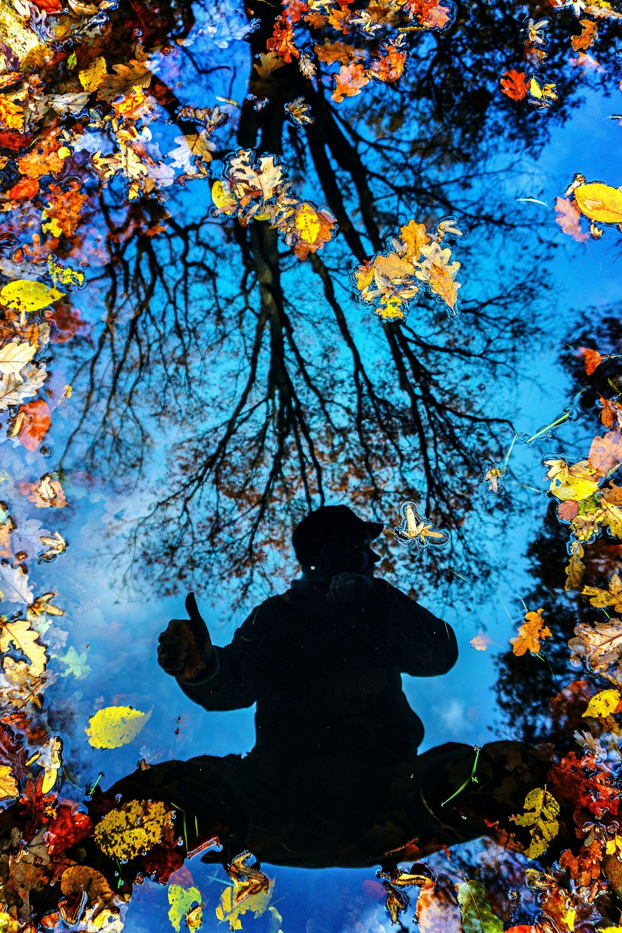 Bon dimanche ! One Person Tree Silhouette Real People Lifestyles Rear View Sky Outdoors Day Men Warm Clothing Nature People Adults Only One Man Only Adult Multi Colored Autumn Colors Reflection Water Leaf Waterfront Puddle Textured  Self Portrait Around The World