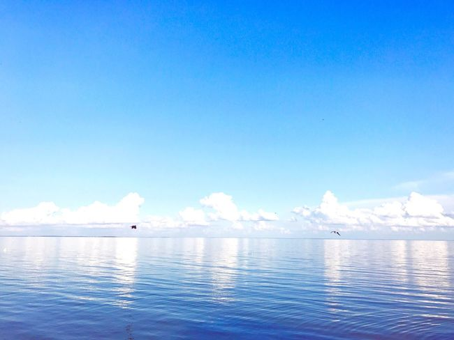 Nida City Nida Lithuania Clouds And Sky Kursiumarios Horizon Over Water Blue Water Blue Sky Beauty In Nature
