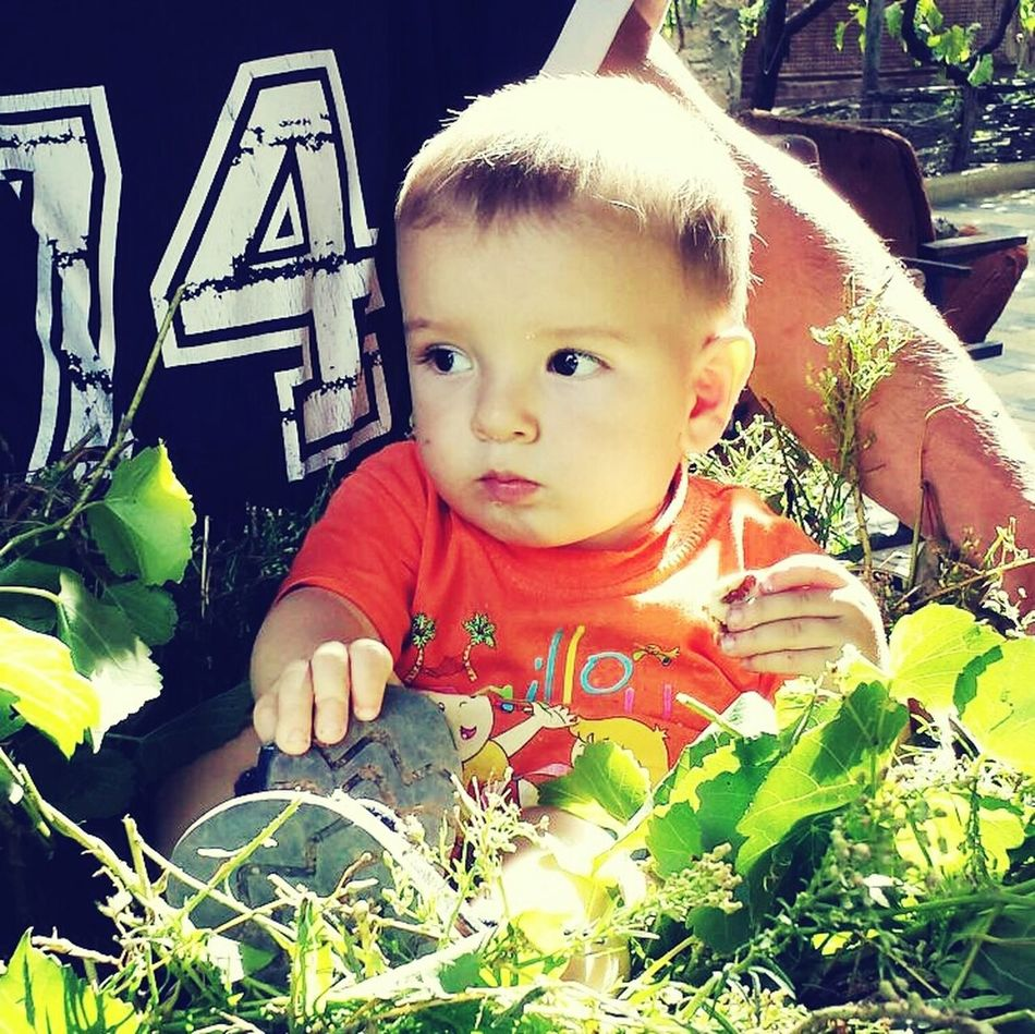 My Beautiful Nephew Arseniy