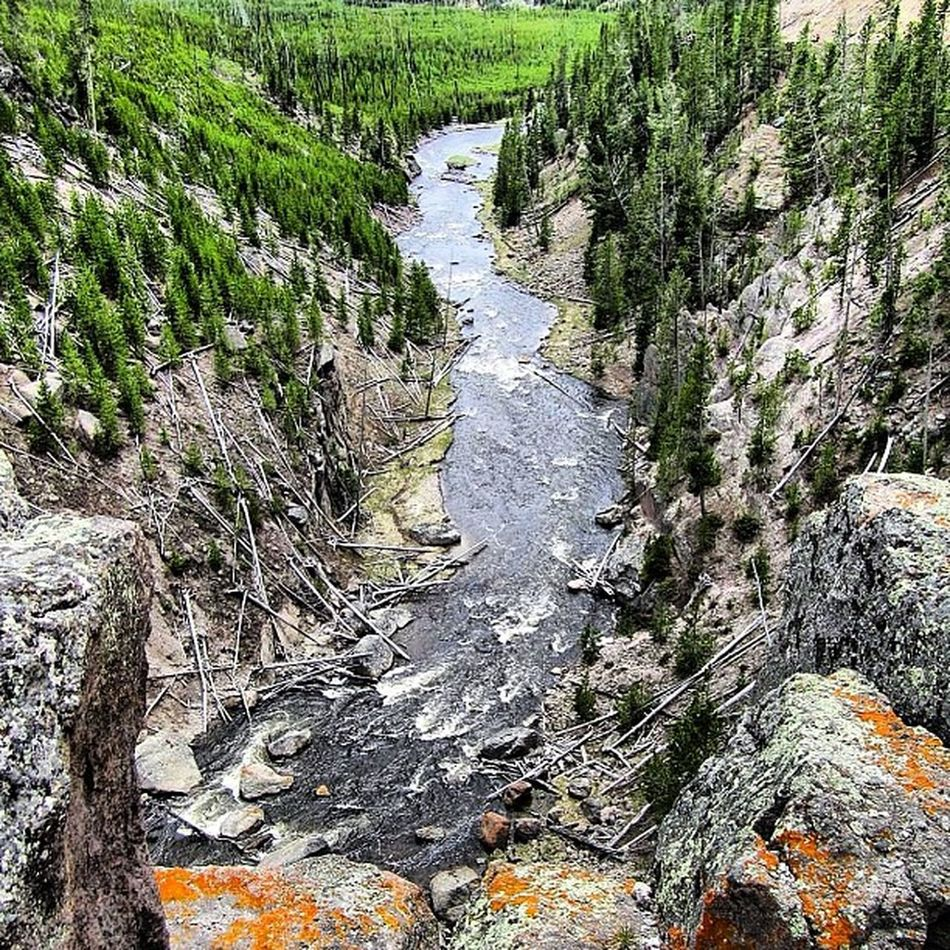 Snake River Yellowstone National Park #yellowstone #yellowstonenationalpark #nationalpark #snakeriver #outdoors #wyoming #nature #travel #honktravel #water #river #rock River Water Nature Travel Outdoors Rock Yellowstone Wyoming Nationalpark Snakeriver Honktravel Yellowstonenationalpark