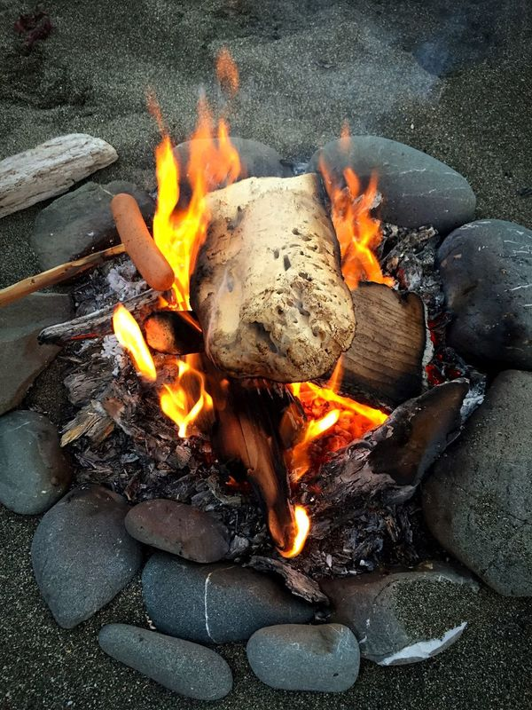 Beach hotdogs Beach Hotdogs Fire Campfire Picnic Picnic Time ♡ Beach Fire Cooking Outdoors Outdoors Sonoma County Coast Sonoma County IPhoneography Iphonephotography Check This Out