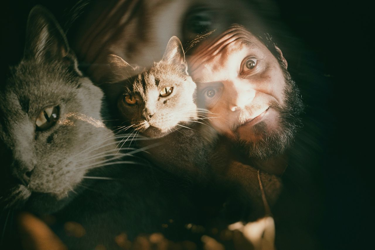 Showing Imperfection me & My Cat Self Portrait Around The World Selportrait_tuesday_nonchallenge Selfie-millionaires Self Portrait Light And Shadow Portrait Photography PortraitPhotography That's Me Portrait Cat Animal Double Exposure Animal Head  Catoftheday Cat♡ Animal Photography