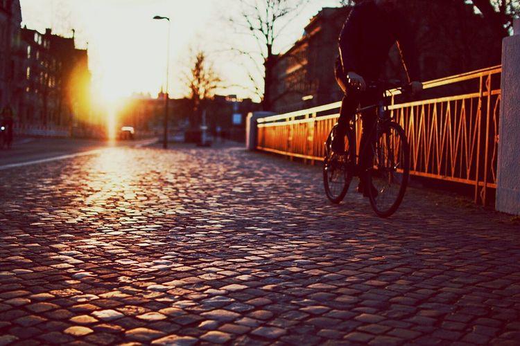 Driving by Biking Biker Sunset Streetphotography Street Brunswick Braunschweig