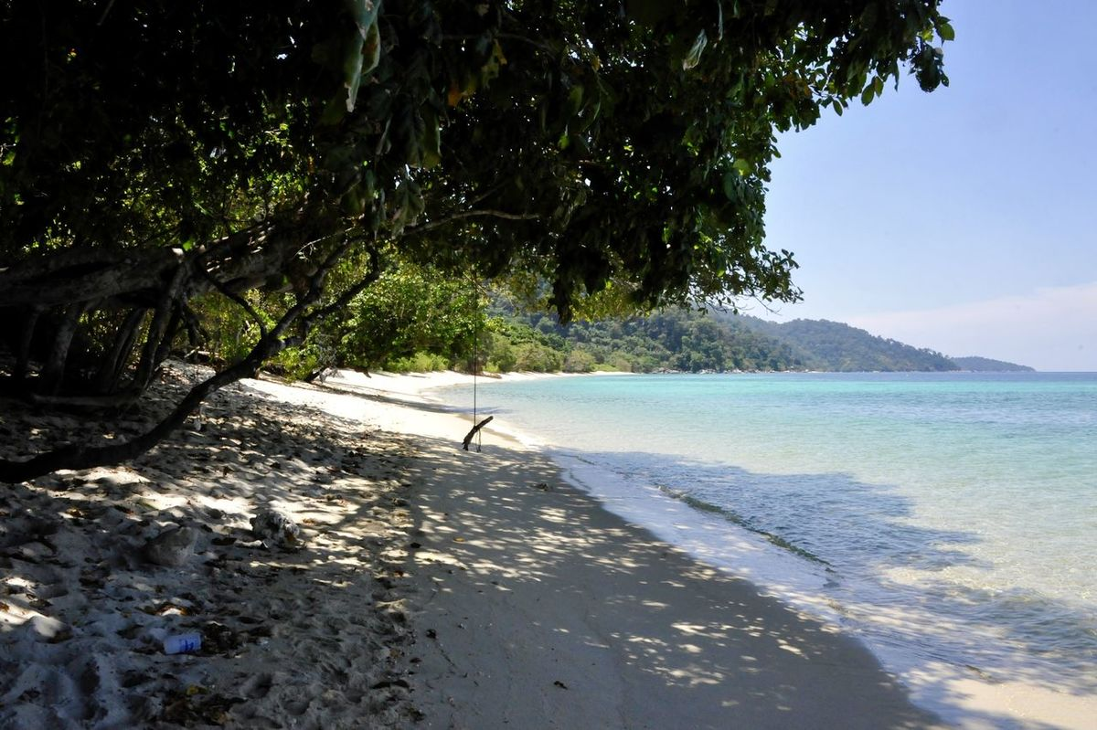 Beach Beauty In Nature Day Horizon Over Water Koh Lipe Koh Lipe Thailand Koh Lipe Travel Nature No People Outdoors Scenics Sea Sunlight Tree Water