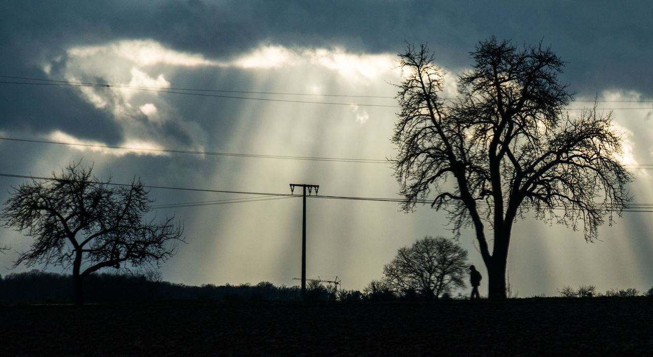 Silence after the storm Light Clouds Light And Shadow Nature Outdoors Shadow Silhouette Sky Sun Tree