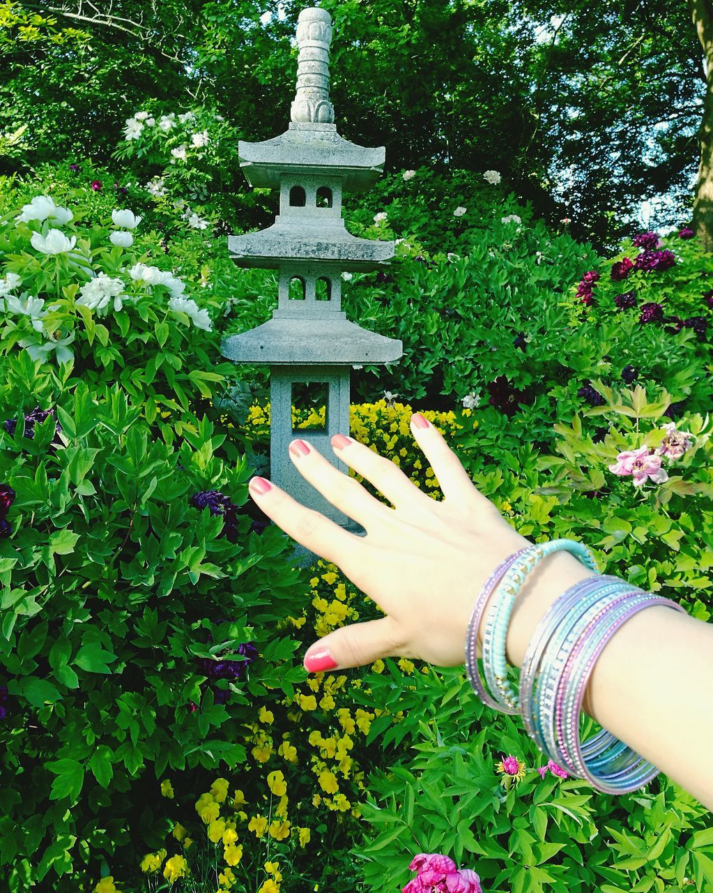 human hand, real people, human body part, one person, green color, outdoors, growth, holding, women, day, plant, beauty in nature, nature, leaf, tree, freshness, close-up, people