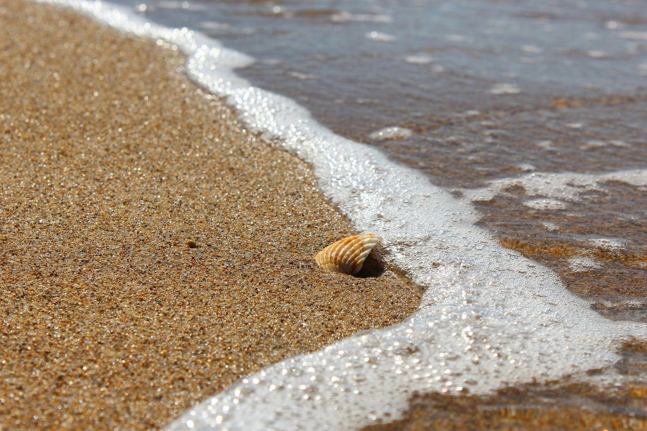 Waves Rushing Towards Shore