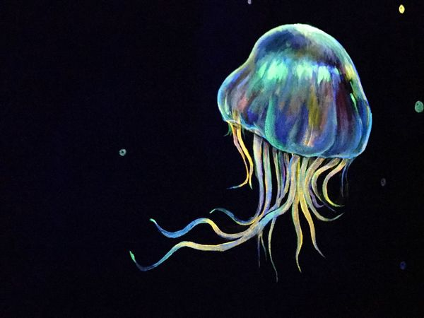 Jelly Fish Night Light Black Color Background Drawing