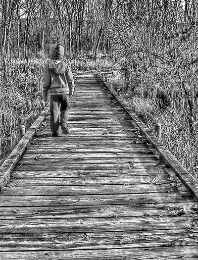 Boy walking on wooden path in nature reserve in fall Walk Walking Walking Around Walking Away Kids Being Kids Childhood Memories Editorial  Black&white Blackandwhite Black & White Black And White Blackandwhite Photography Black And White Photography Nature Path Hiking Trail Nature Trail Nature Trails Fall Autumn Kids Having Fun Kids Playing Kid Hiking Boy Children
