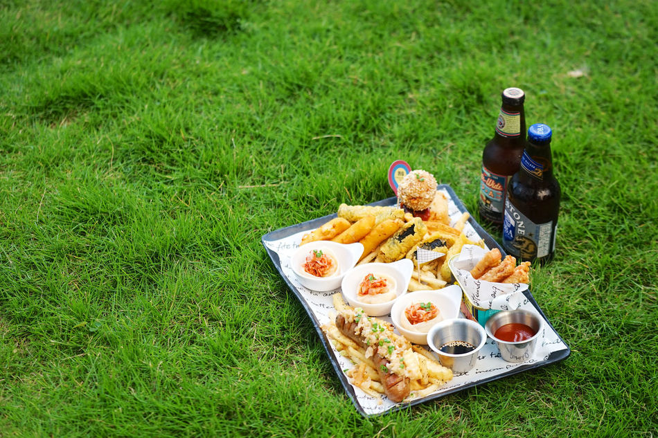 Barbecue Beer Cheese Stick Day Dumplings Fast Food Food Food And Drink Freshness Fried Grass Grassy Green Color Indulgence Lawn Meat Ball Outdoors Platter Ready-to-eat Sausage Spam Take Out Food Temptation Unhealthy Eating