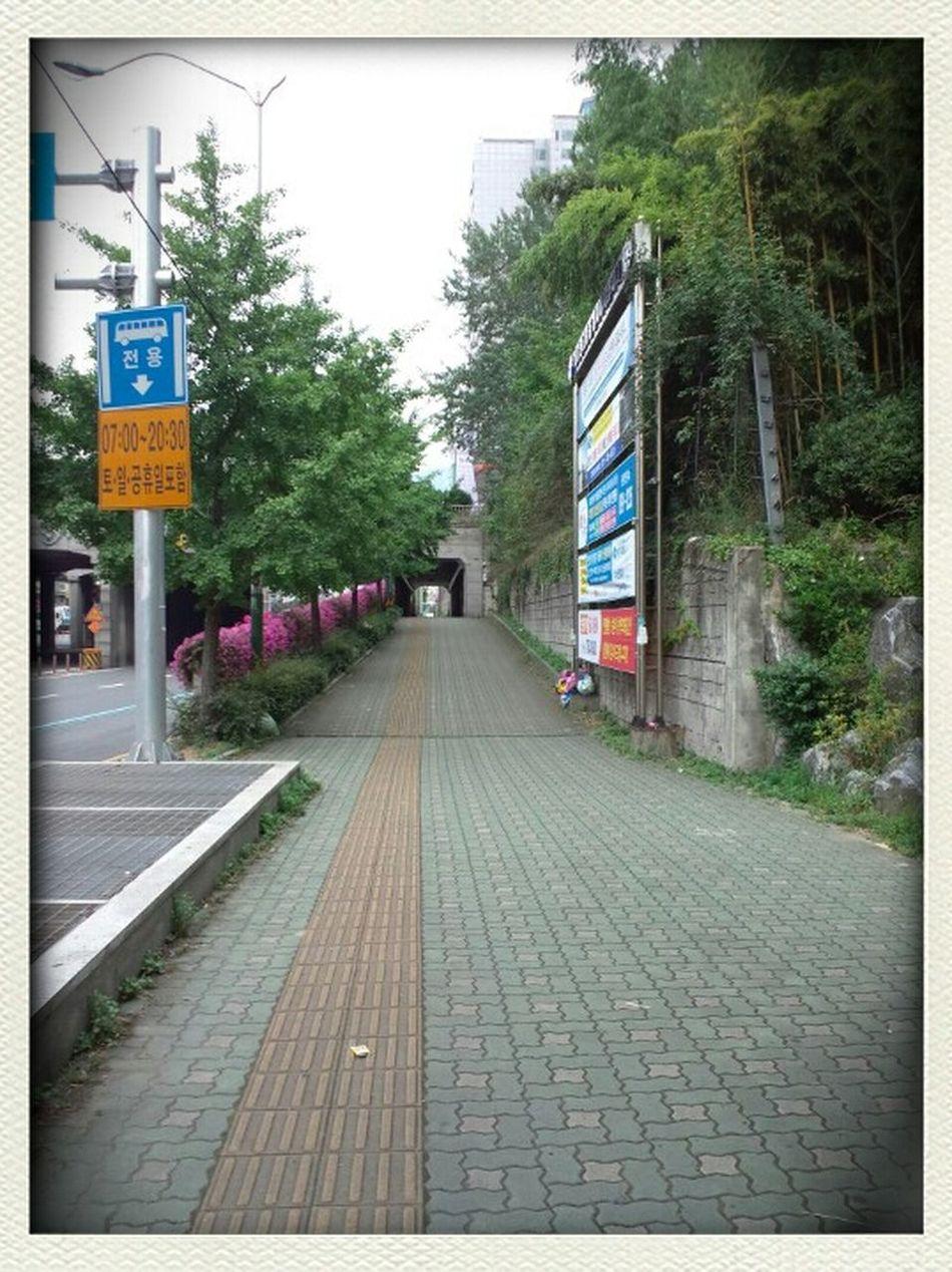 西面 Walking