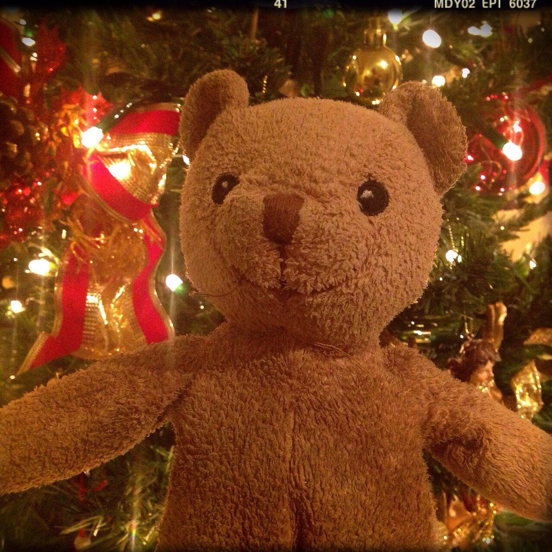 Osito Navidad Christmas Bear