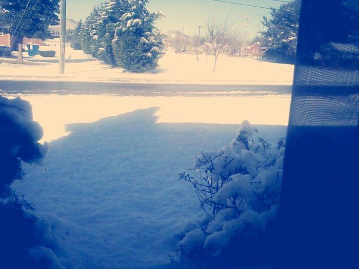 Landscape Snow Window 2013