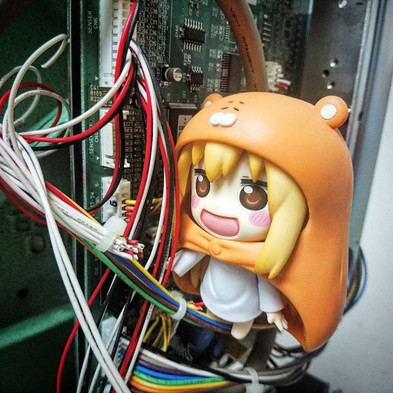 Me:Ha!! Caught you red handed!!! You're trying to gnaw the cables huh!! Umaru Umaruchan Nendoplanet Himoutoumaruchan Nendoworks Nendoworld Nendography Figma Nendogram Nendoroid Nendoroids Nendophotographer Nendomalaysia Nendophotography Toyphotography Toyphotographers Toyphotographer Toyinstagram Toysnapshot Toymalaysia Toycommunity Toycommunities Xperia_knight