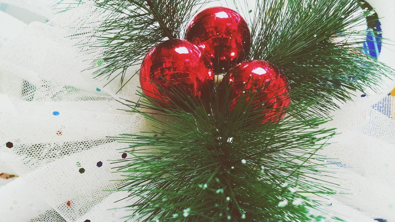 Beautiful stock photos of christmas tree, Celebration, Christmas, Christmas Decoration, Christmas Ornament