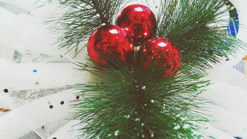 Beautiful stock photos of christmas tree, Celebration, Christmas, Christmas Decoration, Christmas Ornament