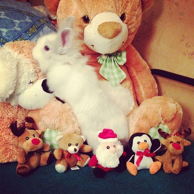 мойте подаръци от Бебето ???☺️?❤️? ???