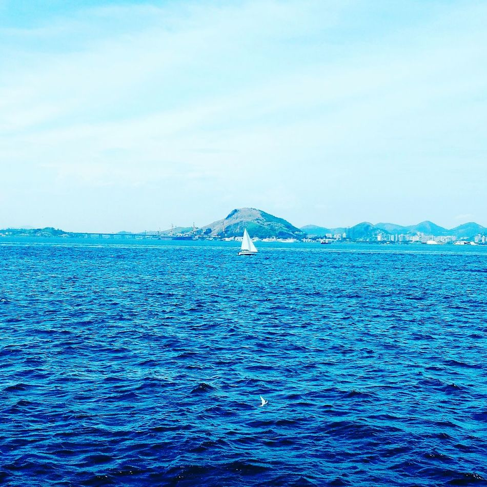 Blue Sea Water Nautical Vessel No People Rippled Sky Sailboat Outdoors Day Nature Floating On Water Sailing Beauty In Nature CarpeDiemPhotography Landscape Niterói Cloud - Sky Reflection Bird Horizon Over Water Tranquility Flying Baía De Guanabara Wather