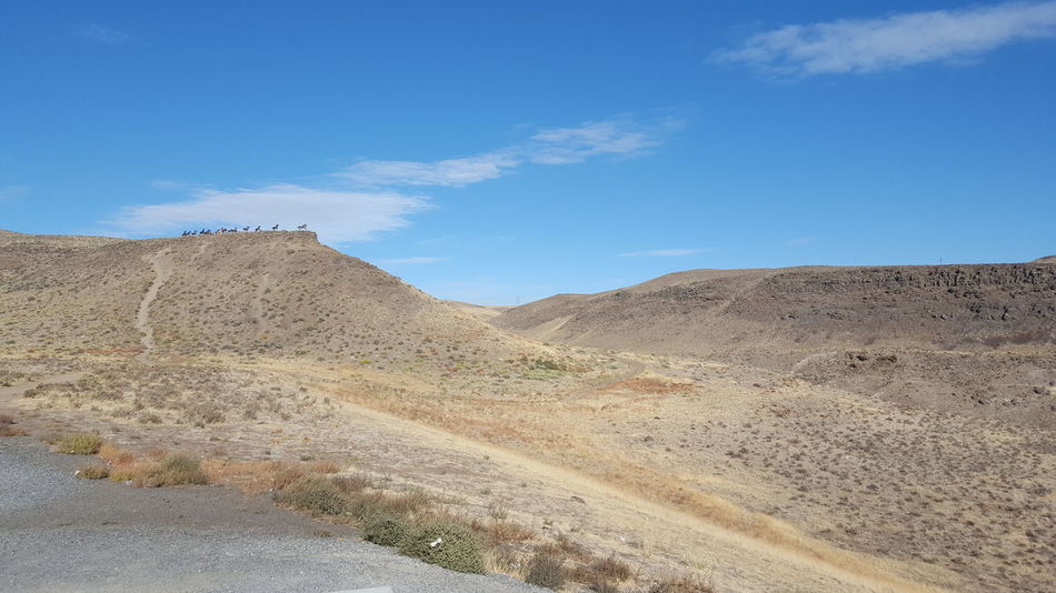Landscape Sky Tranquil Scene Tranquility Blue Remote Scenics Desert Non-urban Scene Nature Arid Climate Physical Geography Solitude Beauty In Nature Geology Dirt Cloud - Sky Outdoors Extreme Terrain Day