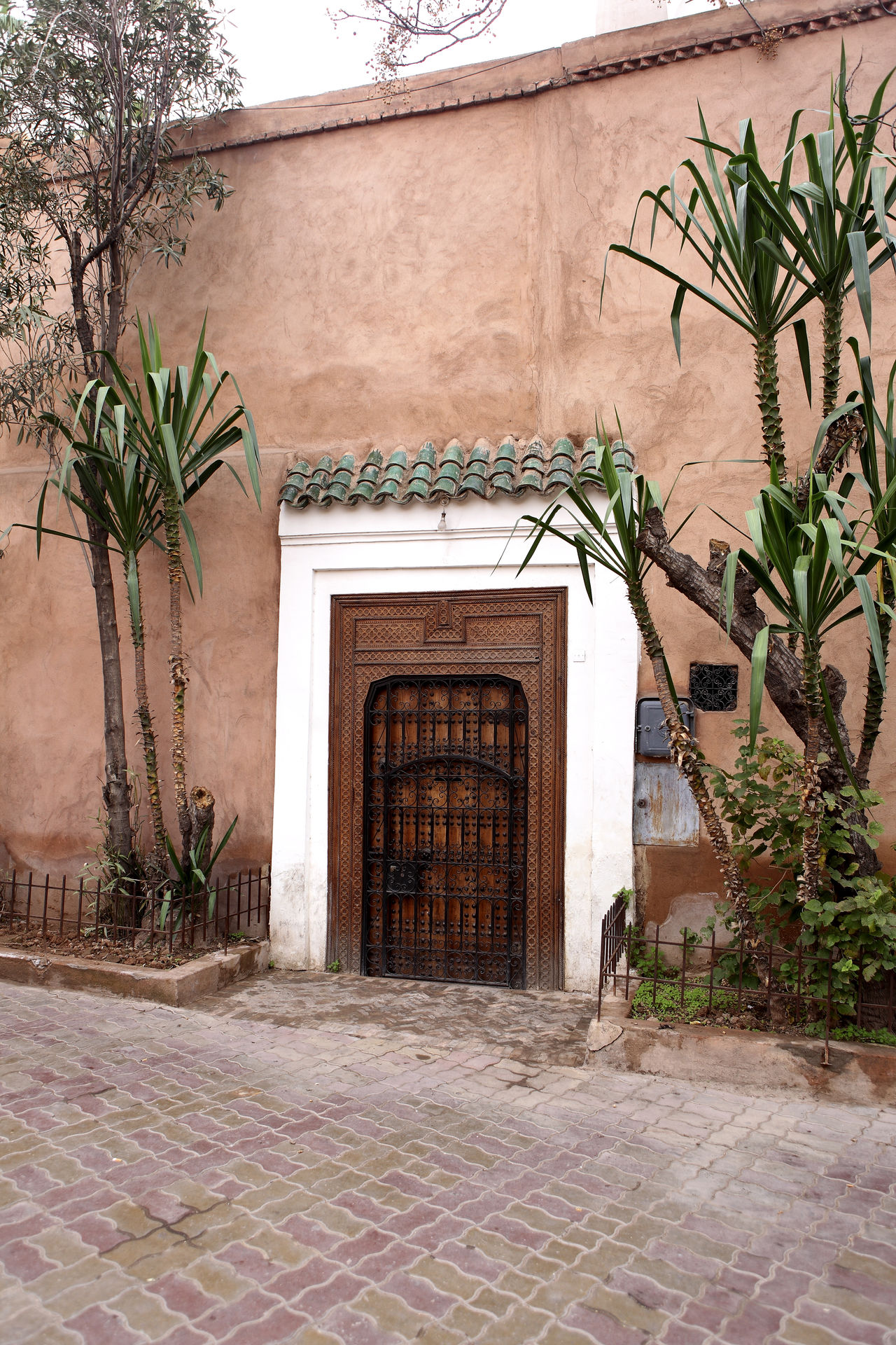 Architecture Building Exterior Built Structure Day Door Entrance Marrakech Marrakech Morocco Morocco MoroccoTrip No People Olive Tree Outdoors Palm Tree Plant Travel Travel Destinations Travel Photography Tree