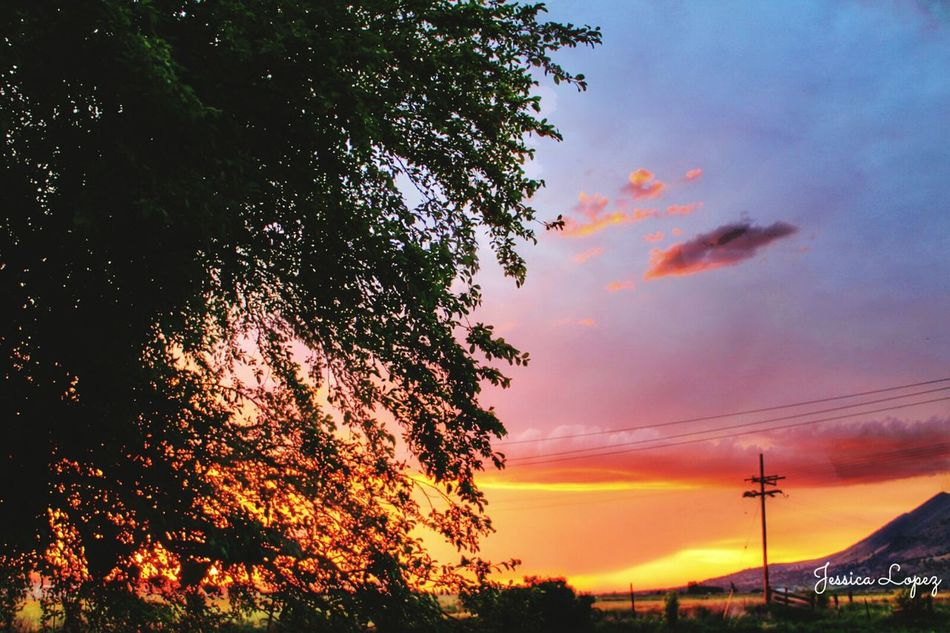 Taking Photos Peaceful View Peaceful Evening Love To Take Photos ❤ Beautiful Beauty Cloud Beautiful Day Beautiful Sunset Sky_collection Beautiful View Summer Summer2016 Summertime EyeEm Best Shots - Nature Colorful Sky Trendstagram TRENDING